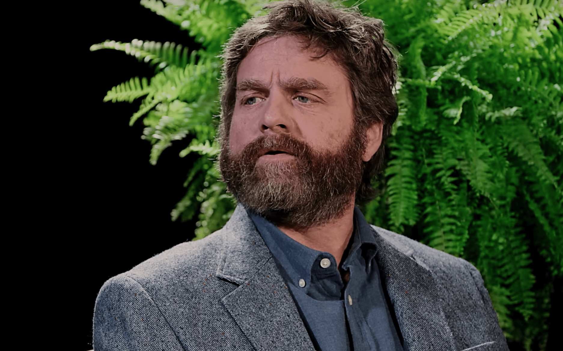 Zach Galifianakis mattatore di Between Two Ferns