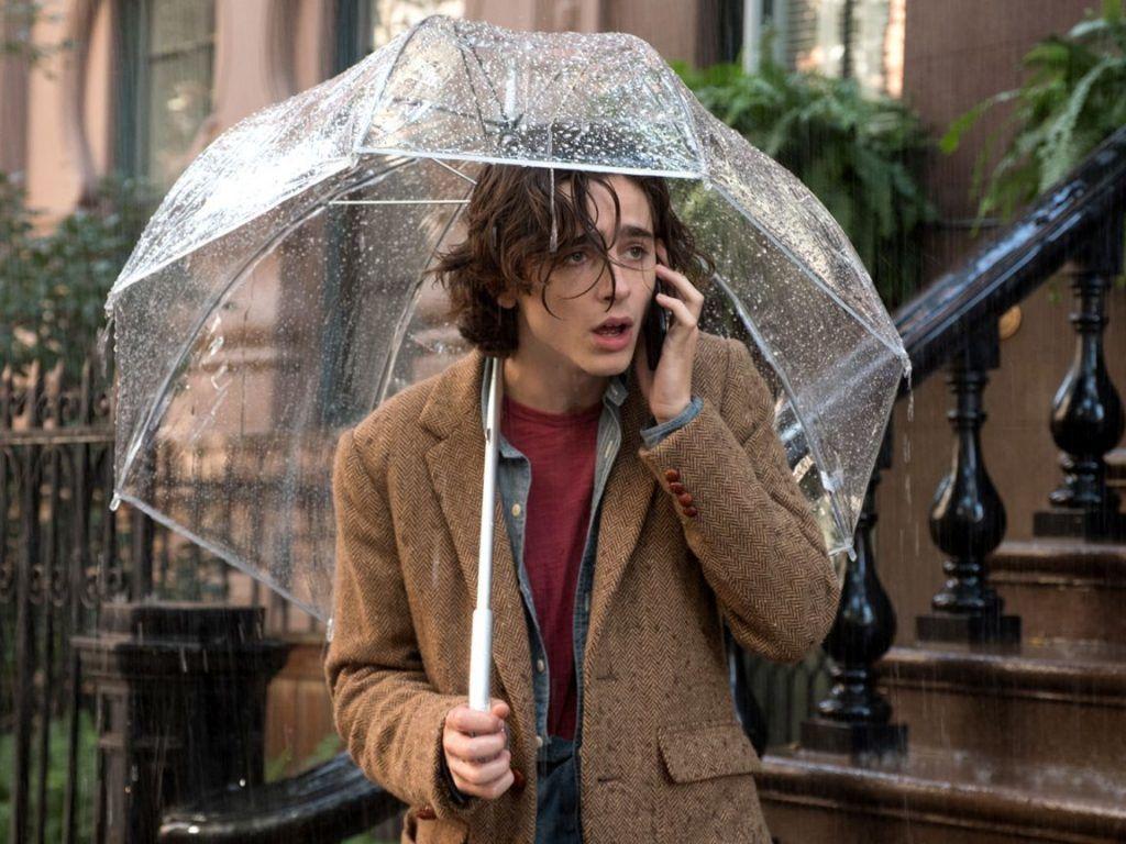 Timothée Chalamet in Un giorno di pioggia a New York