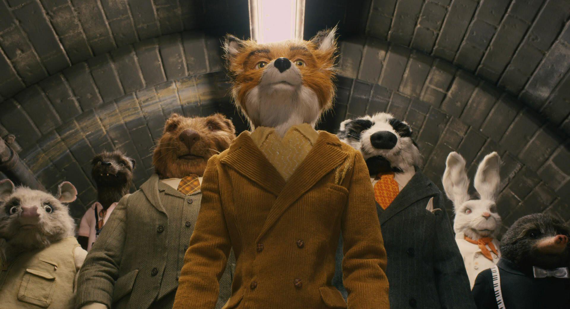 I migliori film di Wes Anderson