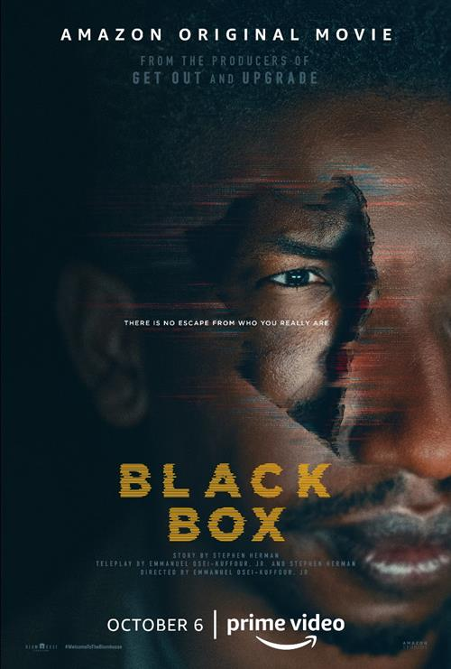 Black Box: il poster