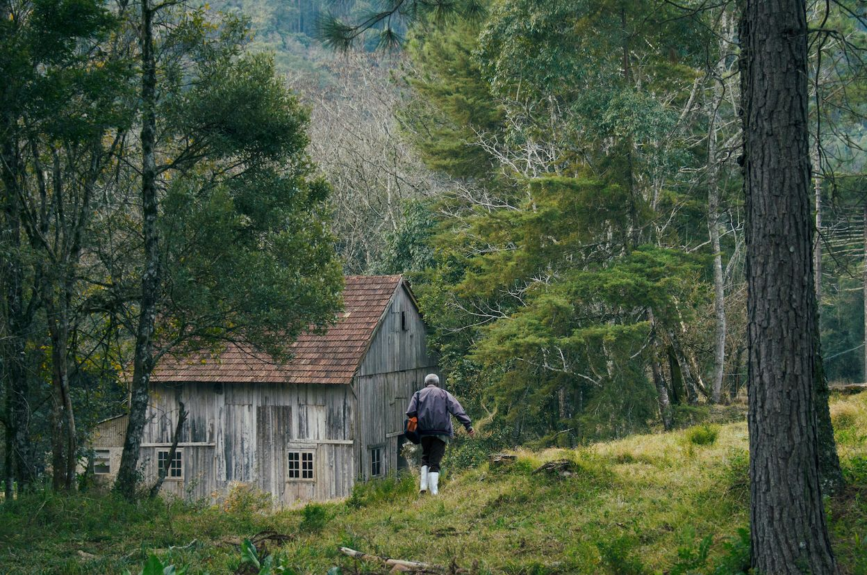 Memory House (Casa de Antiguidades) recensione film di João Paulo Miranda Maria