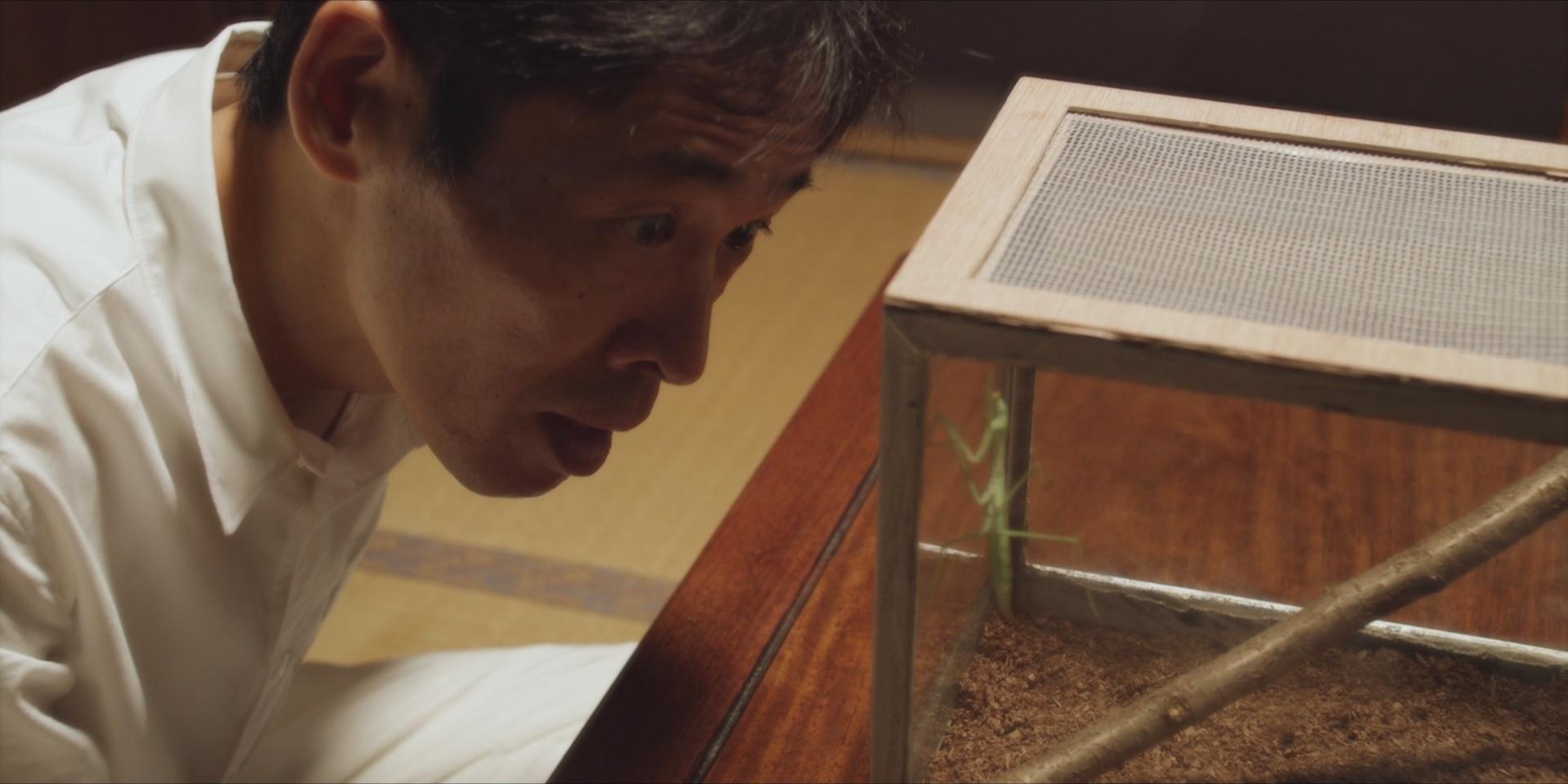 Hideki Nagai e la mantide religiosa