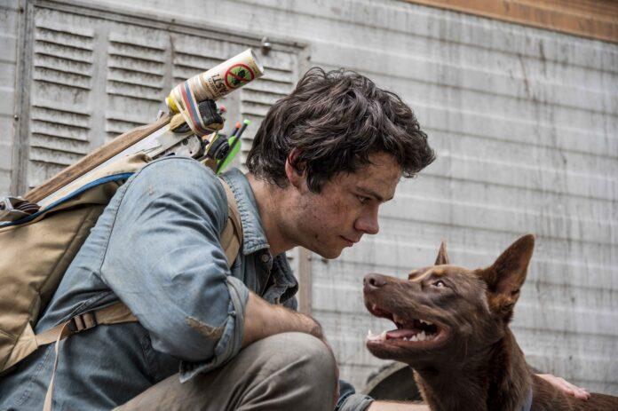 Love and Monsters recensione film Netflix con Dylan O'Brien e Jessica Henwick