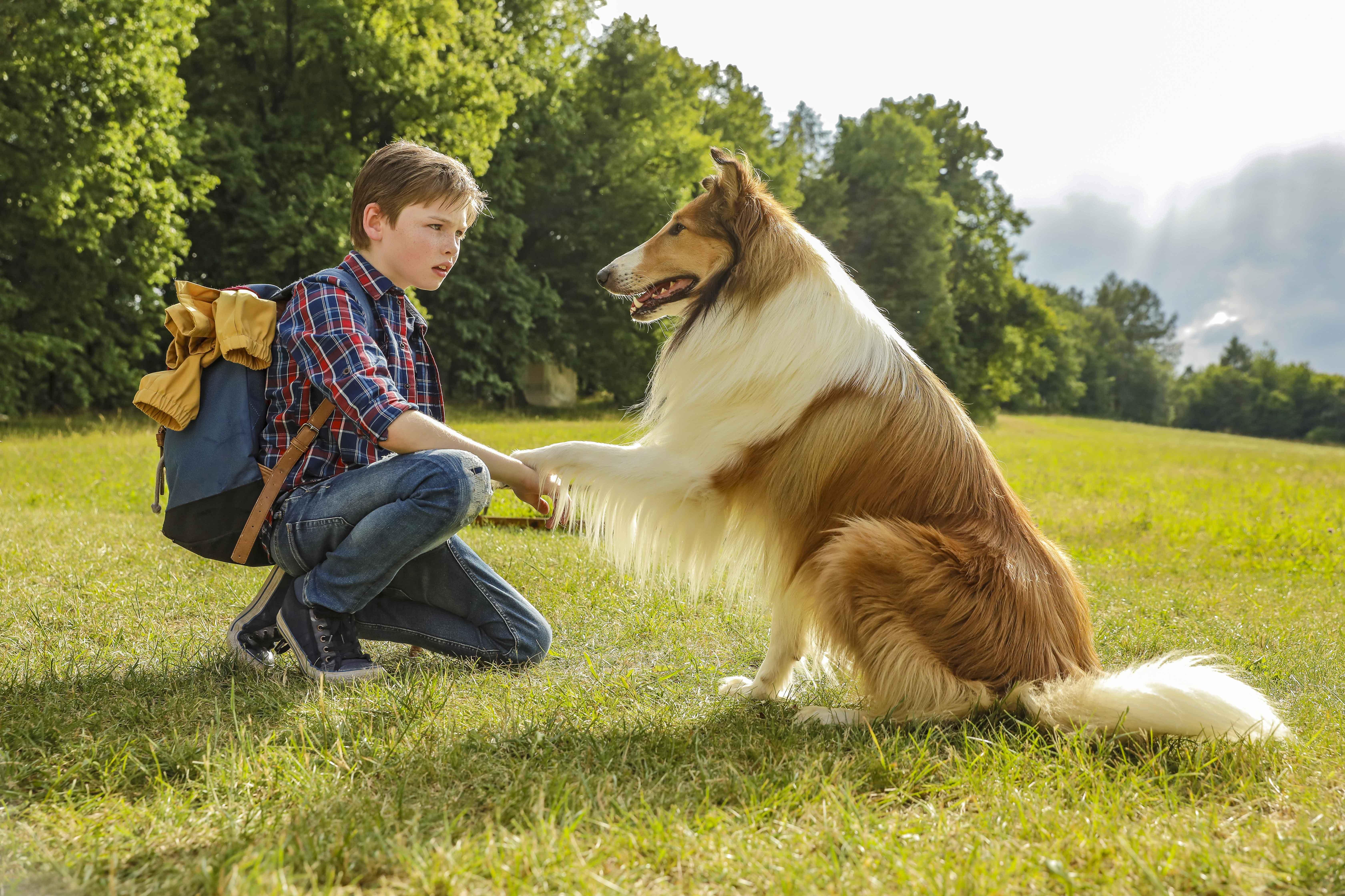 Nico Marischka e Lassie