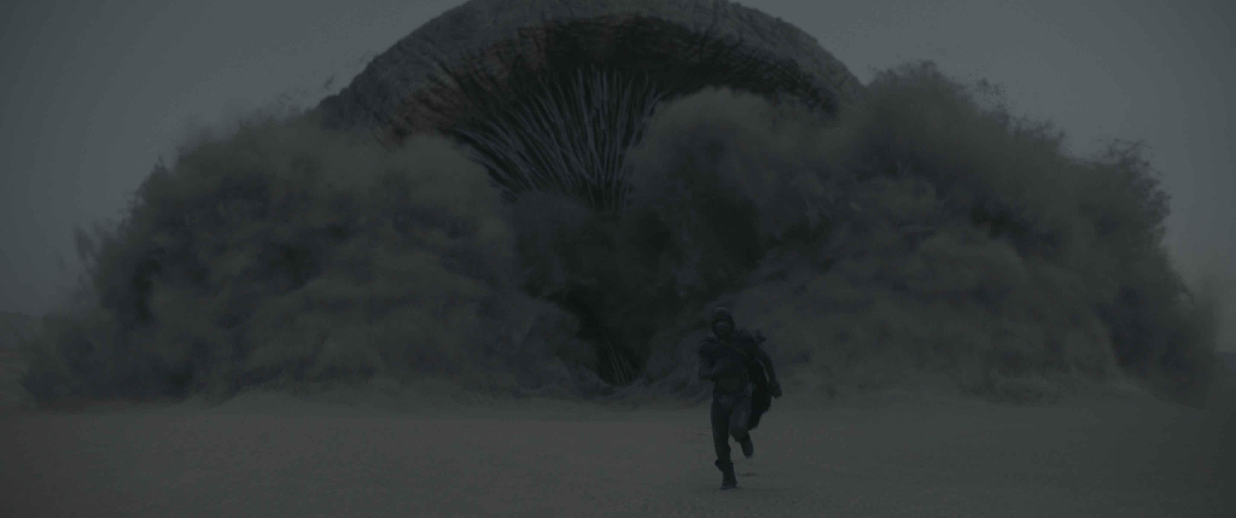 I vermi delle sabbie di Dune
