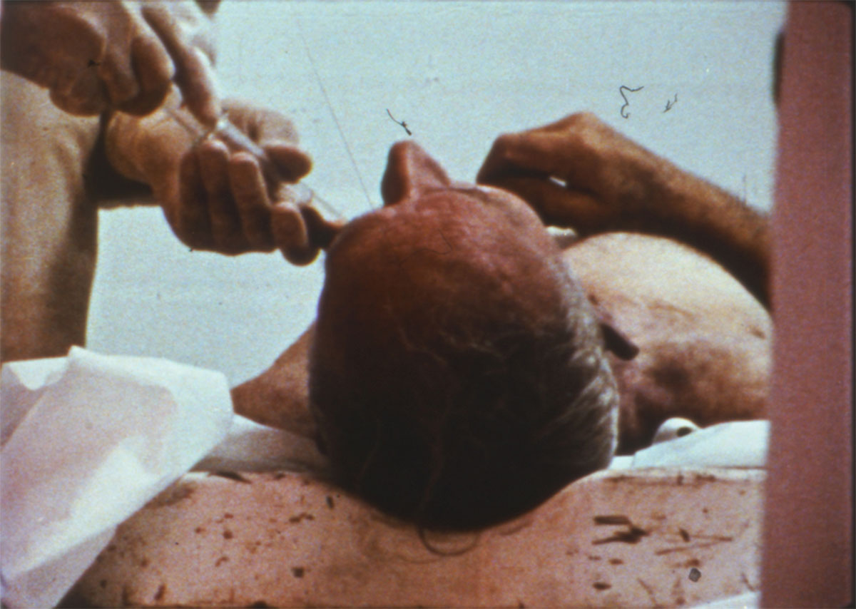 The Act of Seeing with One's Own Eyes di Stan Brakhage